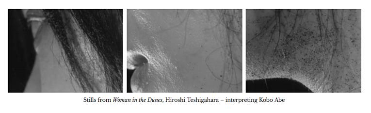 stills-woman-in-dunes-teshigahara-abe